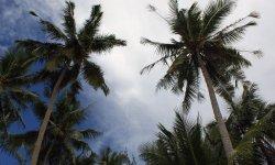 Филиппины, советы путешественнику