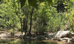 Что выбрать – рыбалка в Кемере или рыбалка в Анталии? А не все ли равно?