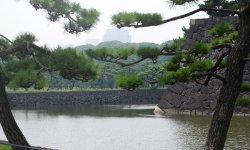 Что нужно брать с собой при поездке в Японию и каких  советов придерживаться
