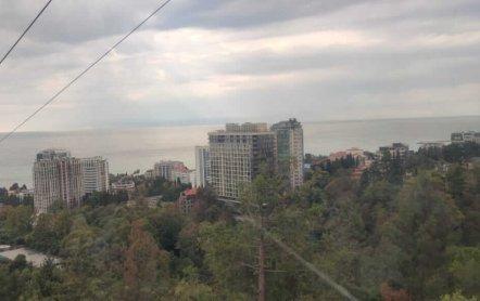 Парк Дендрарий Сочи – место куда хочется возвращаться…