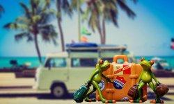 Горящие туры в Паттайю или Пхукет в Тайланде