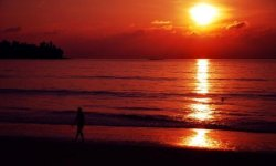 Так ли хорош пляж Камала Пхукет, как о нем говорят?