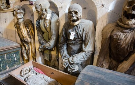 Мертвые среди живых или Катакомбы Капуцинов