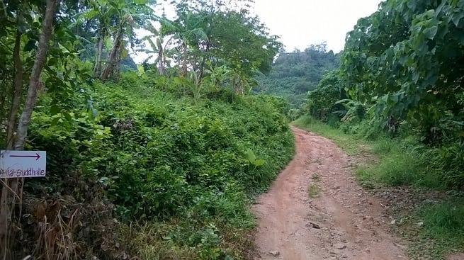 Дорога грунтовая