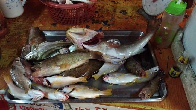Кузовок с рыбой