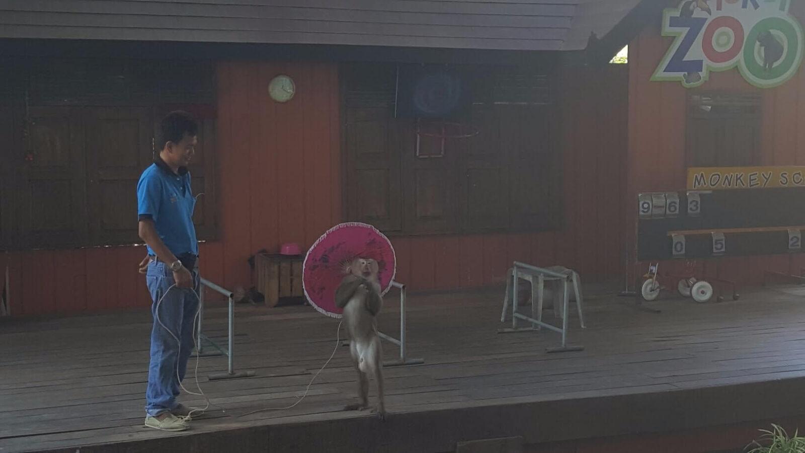 дресировщик с обезьяной