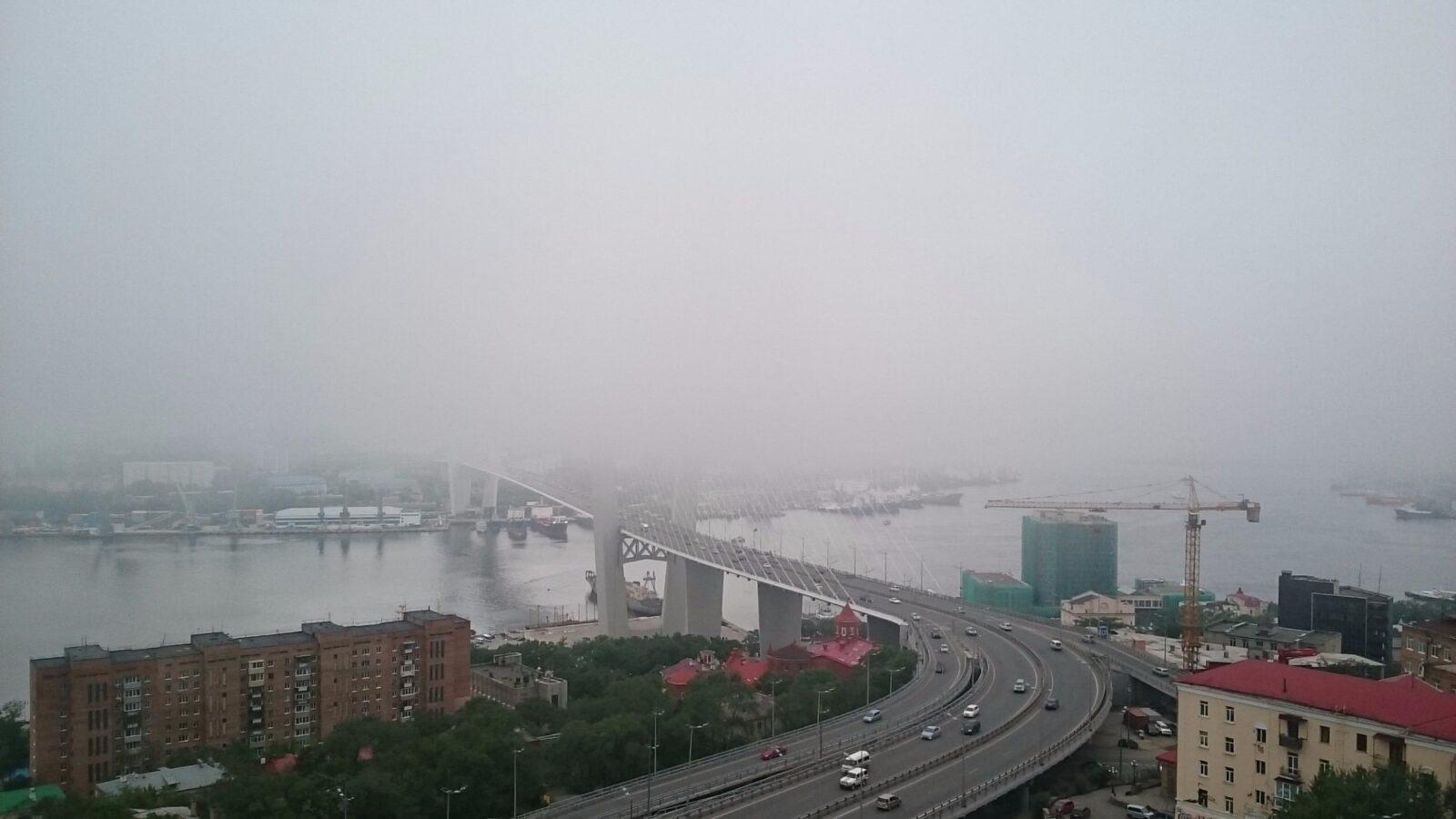 Все в тумане