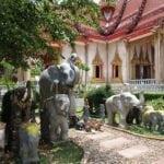 Слоны в саду