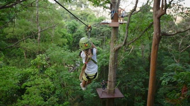 Полет над джунглями