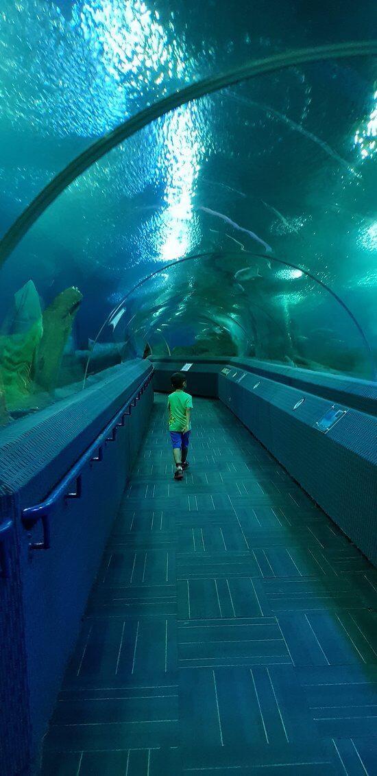 Проход в туннеле