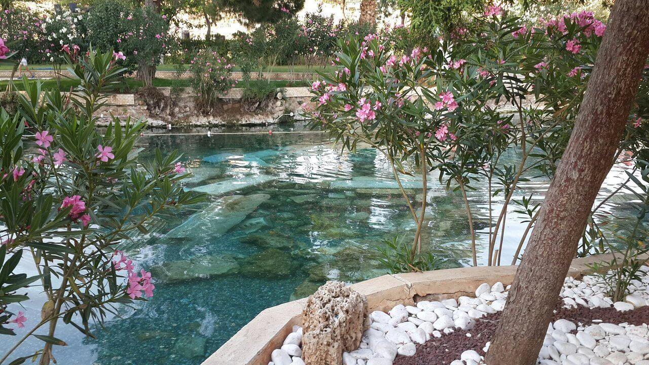 Бассейн в цветах