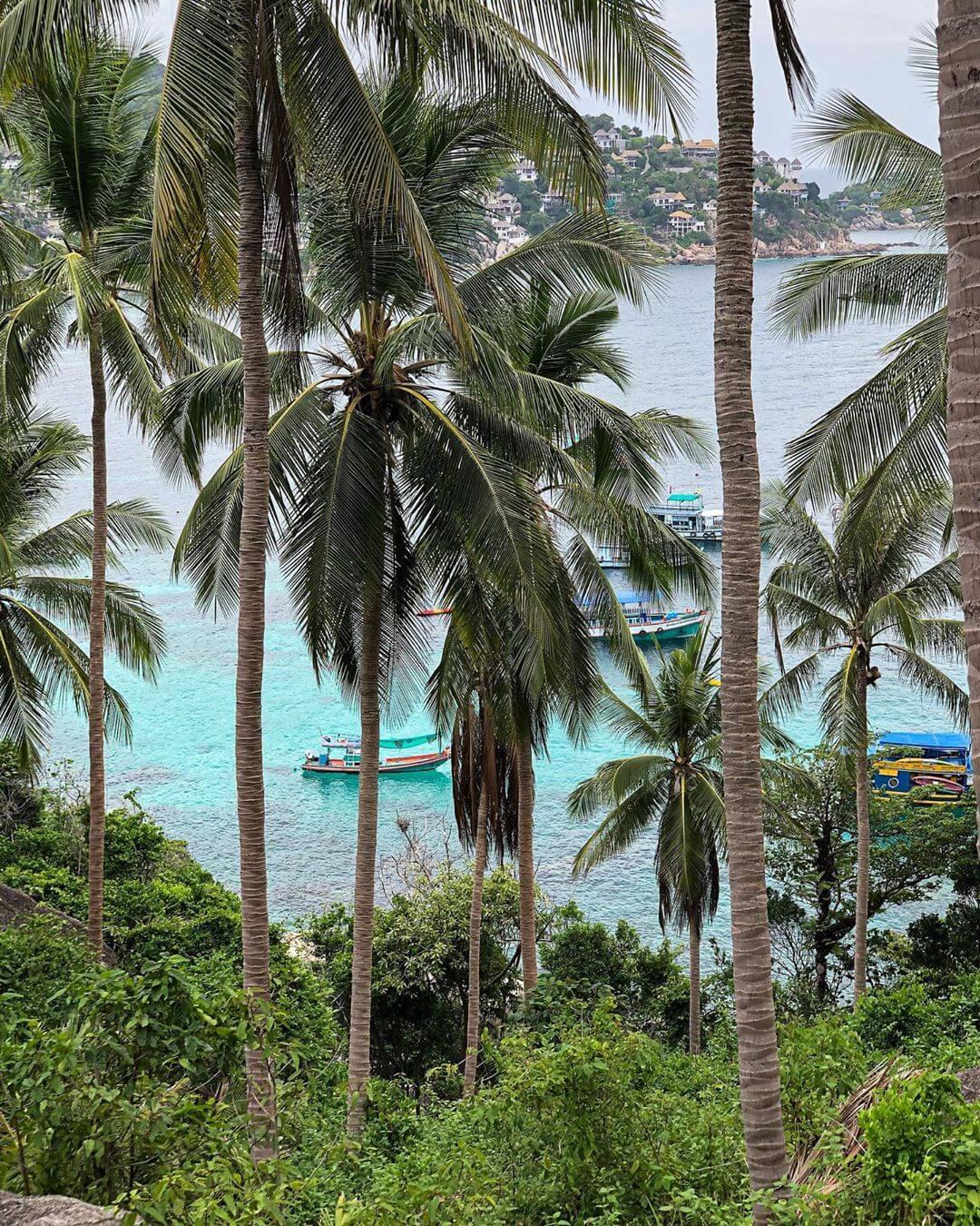 На острове Ко Тао