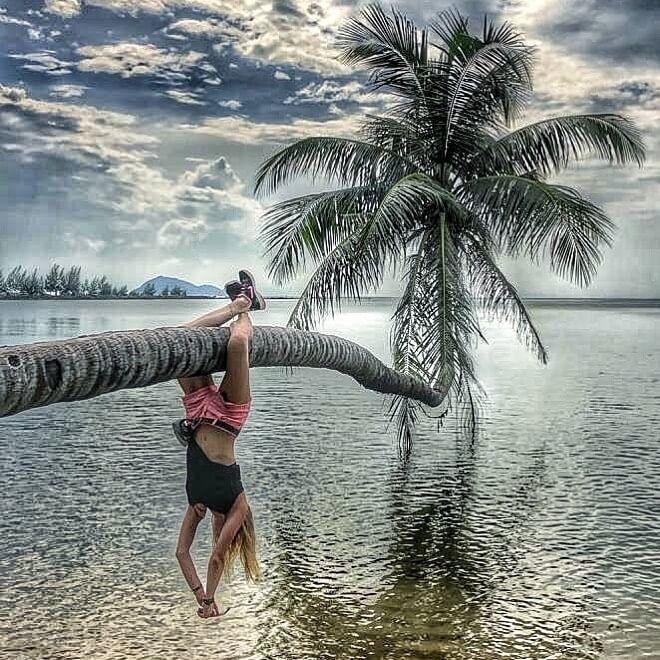 Пальма у моря