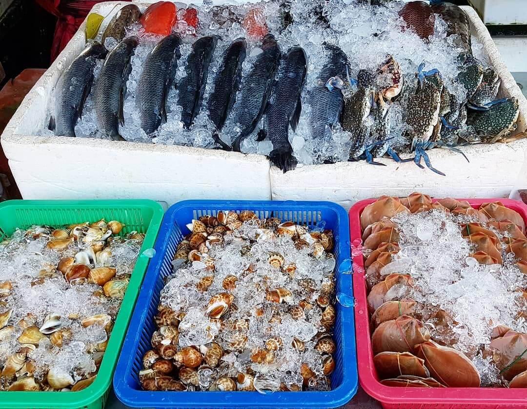 свежеохлажденные морепродукты