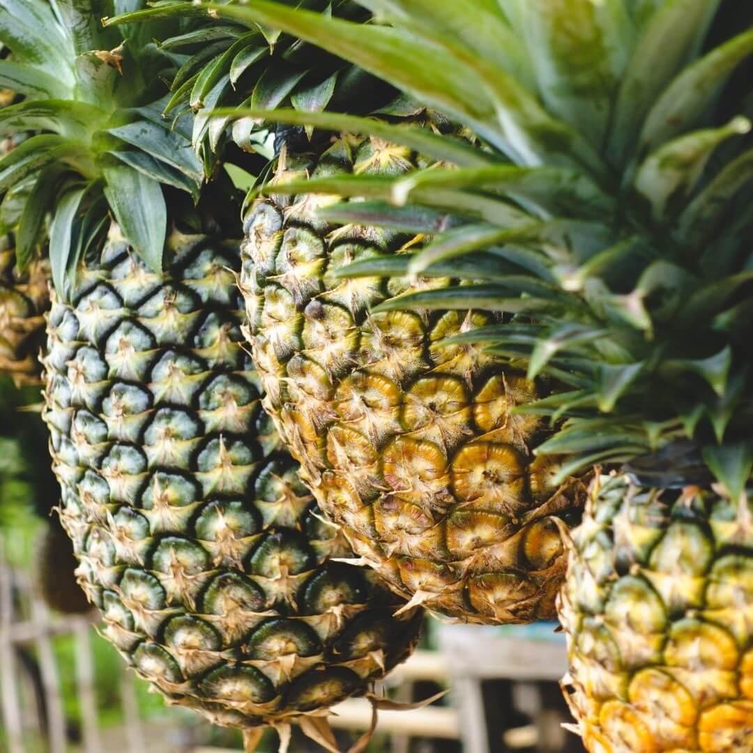 Неочищенный ананас