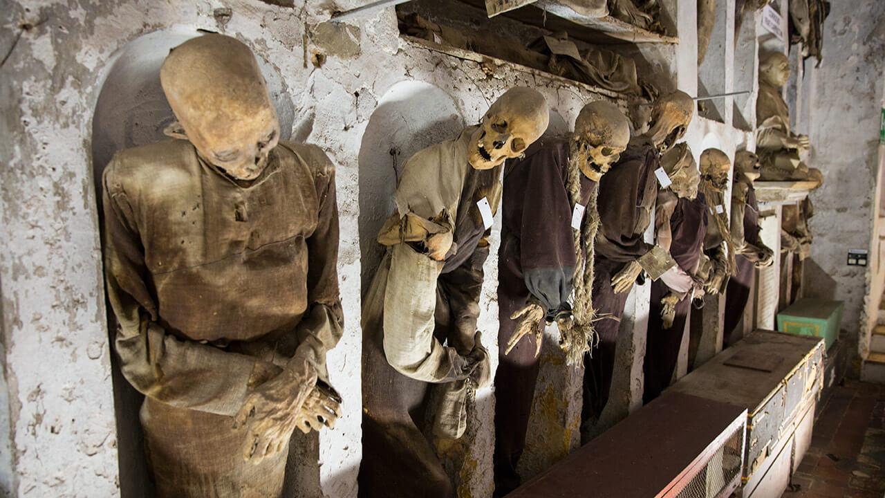 Скелеты в нишах