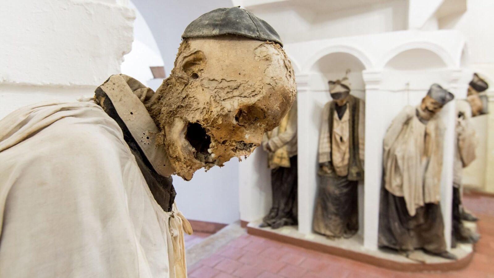 Развалившийся скелет