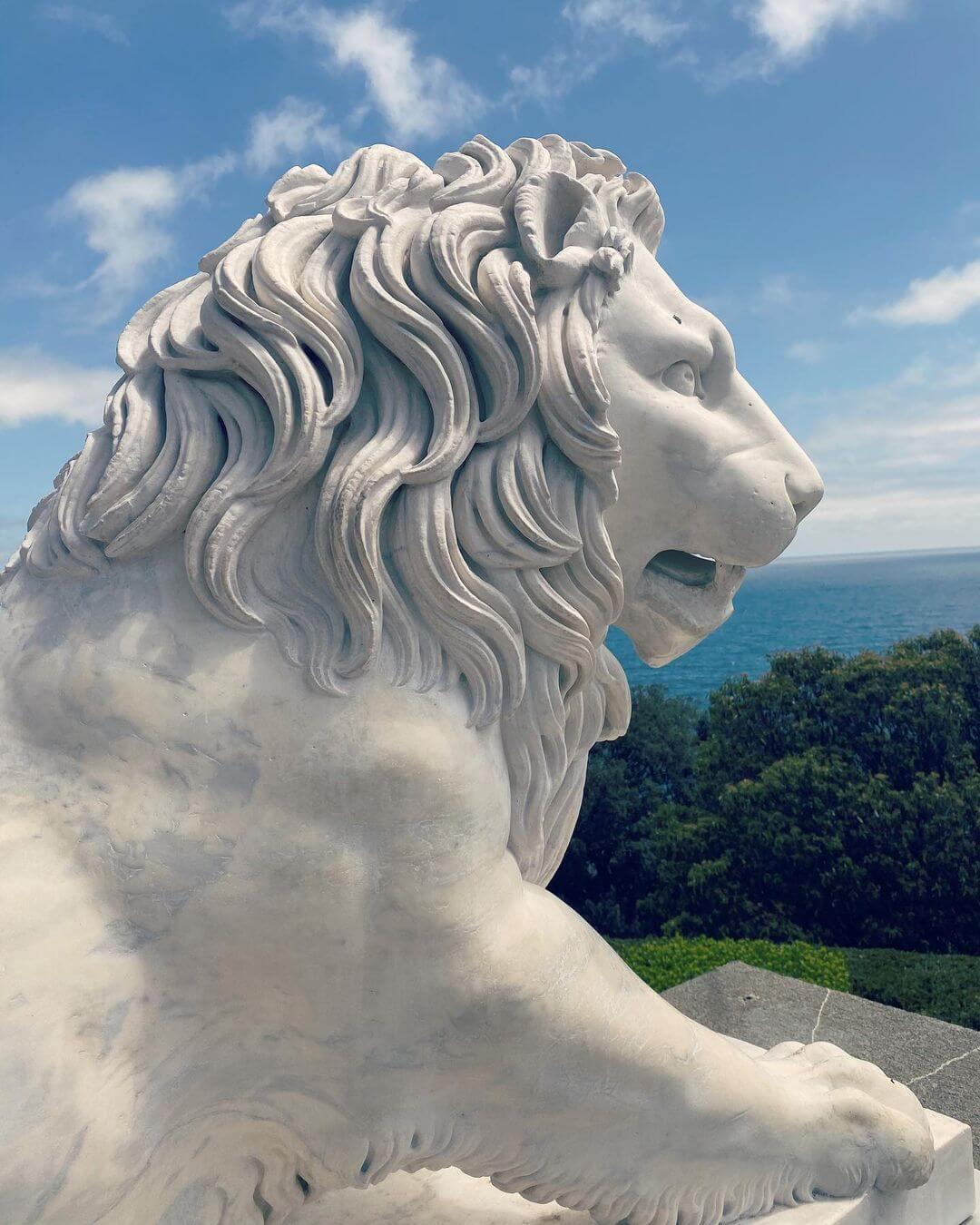 Лев во дворце