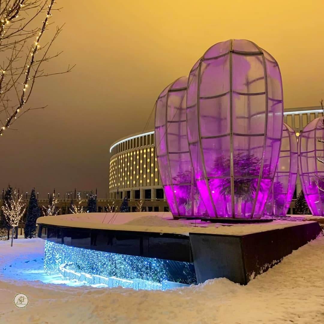 Зимние купола