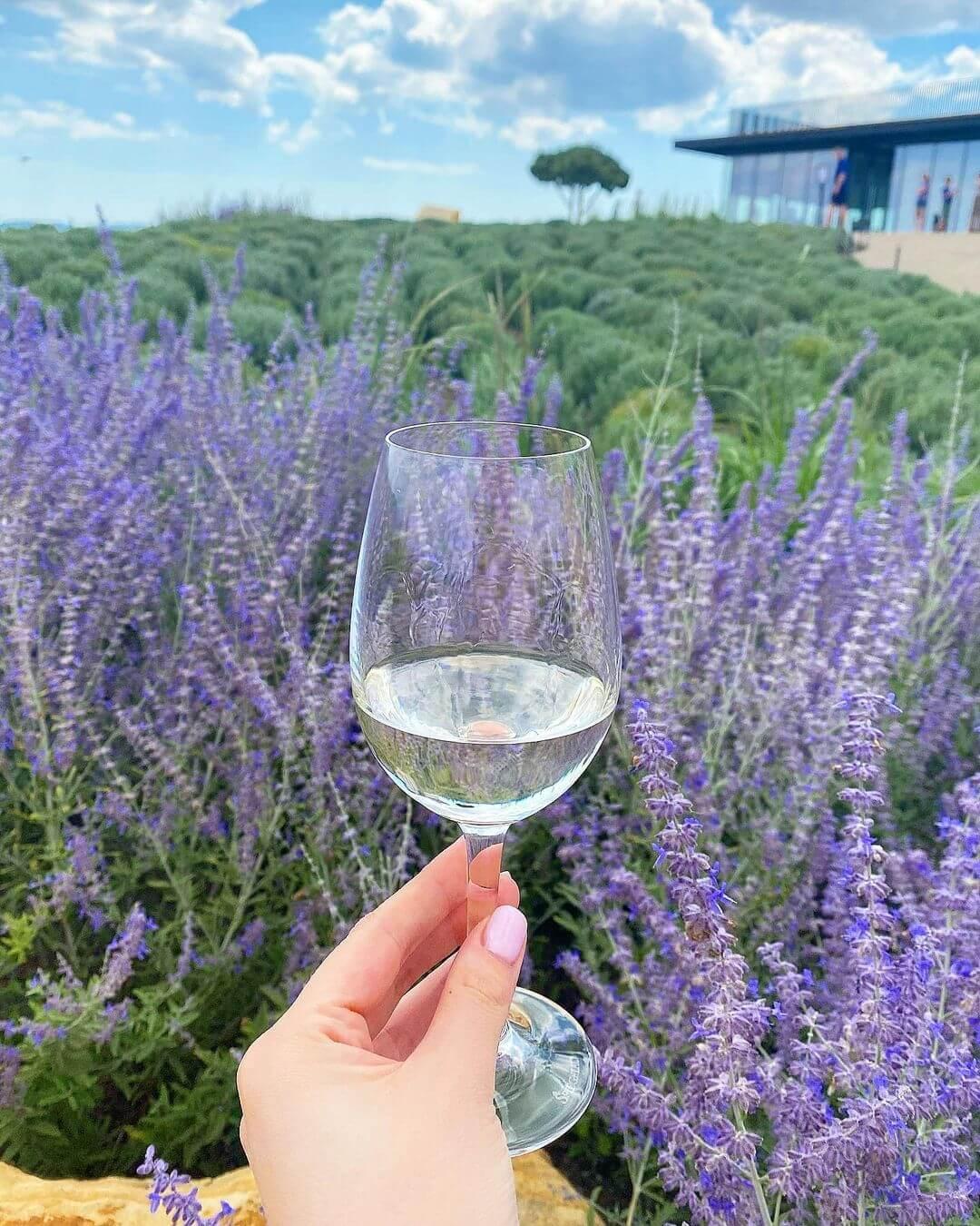 Вино из Гай Кодзора